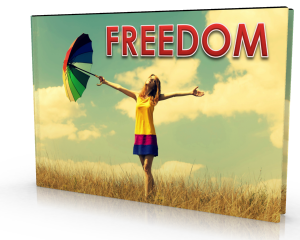 FREEDOM 3D